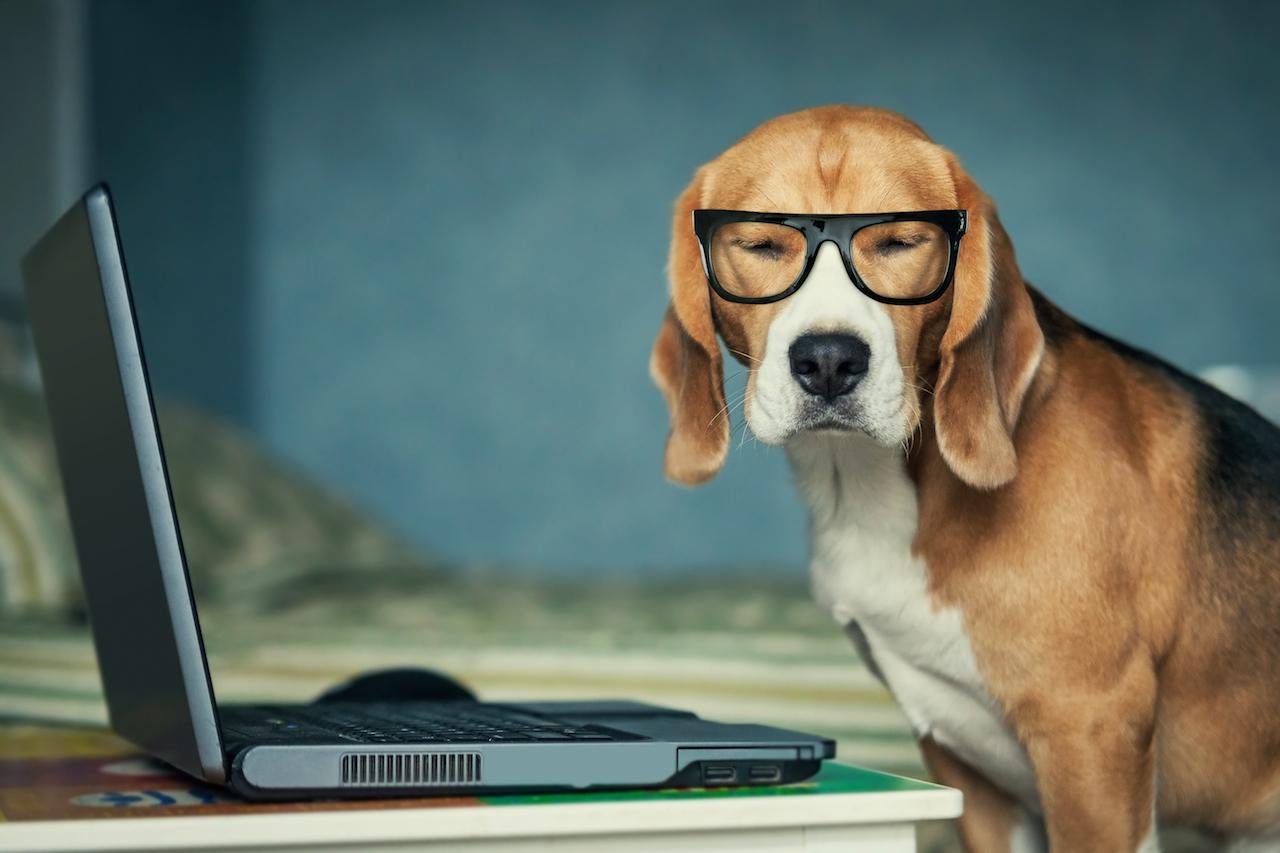 6 oportunidades profissionais por trás dos e-mails do dia a dia